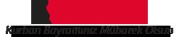 Yeni Asır Logo